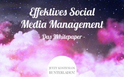 Twitter Ads: Die Social-Plattform gibt Tipps für eine bessere Performance